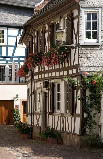 Eltville , GERMANY
