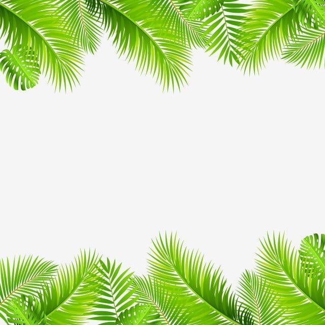 Leaf Green Tropical Border Jungle Leaves Background Nature Abstract Summer Illustration Beautiful Design Art Leaf Clipart Green Leaf Background Leaf Background