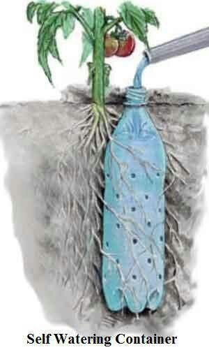 """Underground Self Watering Recycled Bottle System - """"Potted Vegetable Garden Lif..."""