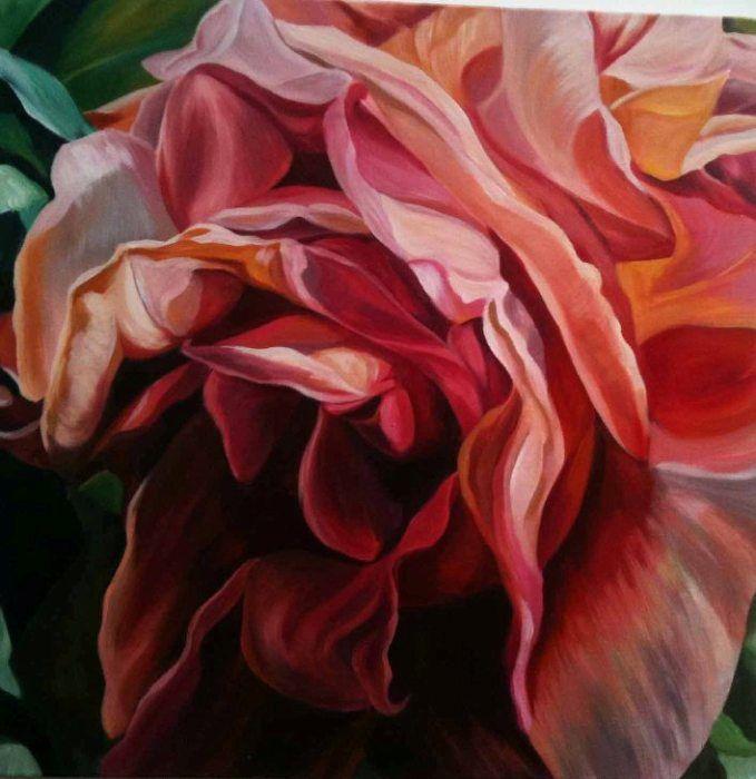 Jacqueline Coates : 'Bilpin Rose'. Acrylic on canvas with glazes. 60cm square.