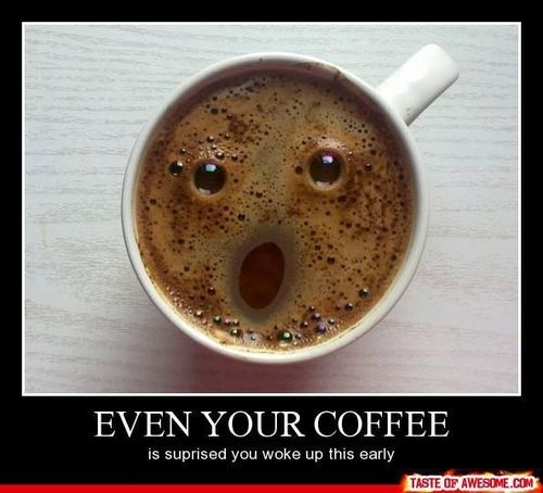 lol: Coff Faces, Funny Things, Funny Coff, Funny Stuff, Funny Awesome, Coff Greeting, Funny Food, Coolfunni Stuff, Coff Addiction