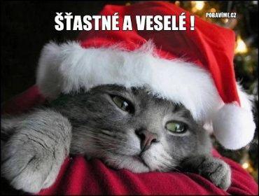 Vánoční Přání | Zábavné obrázky a videa