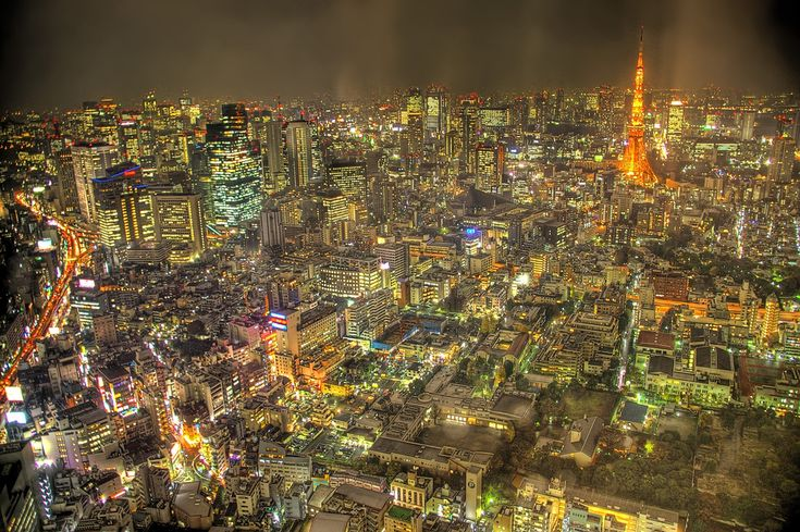 Tokyo Lights (Google Image Result for http://scientopia.org/blogs/scicurious/files/2010/10/tokyo_lights.jpg)