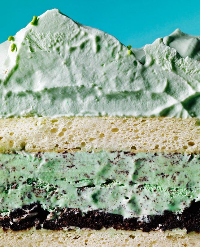 mint chip ice cream cake