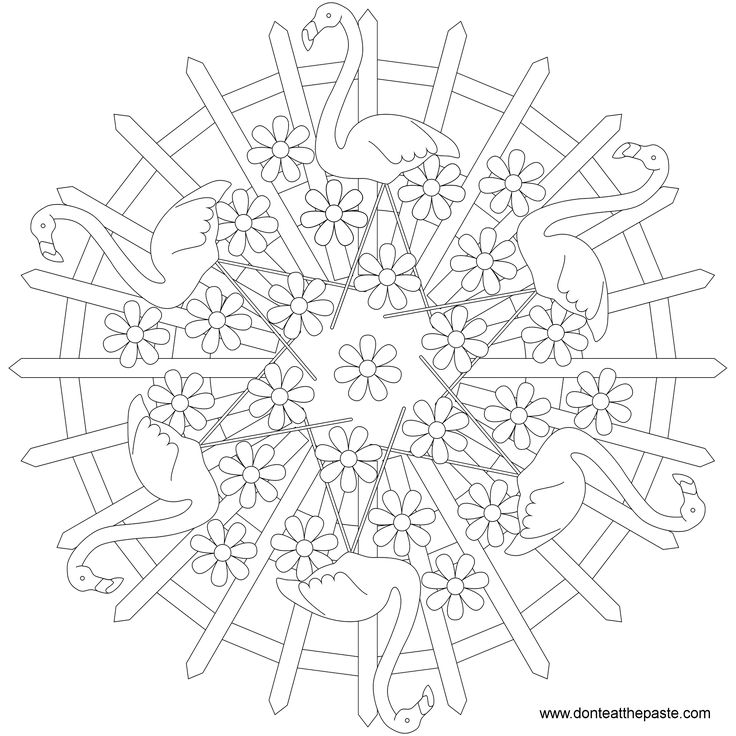 Animal Mandala Picture To Color Flamingo Coloring Pages