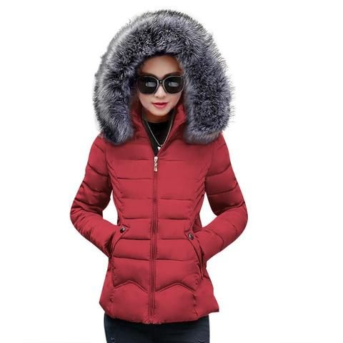 5bc45c4517b Winter Female Jackets new 2018 fashion Winter Jacket women Hooded Women's  down jacket Fake hair collar Winter coat Female Parka