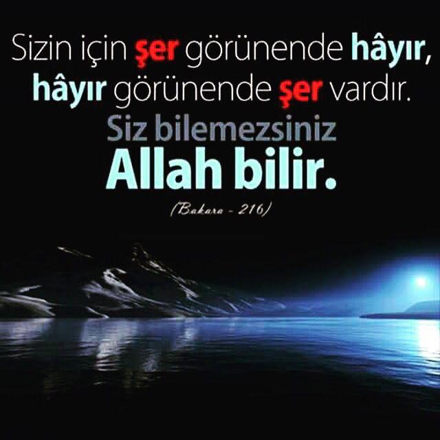 Allah bilir...
