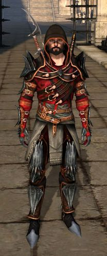 Mantle of the Champion (rogue)   Dragon Age Wiki   Fandom powered by Wikia