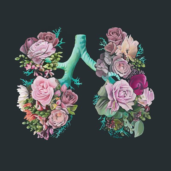 Floral Lungs II Charity Anatomy Print of Oil Painting – Anatomical Art Print – Human Body – Medical Art