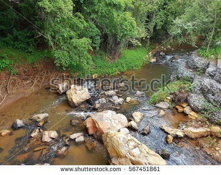 Stream running through garden over rocks in South Africa