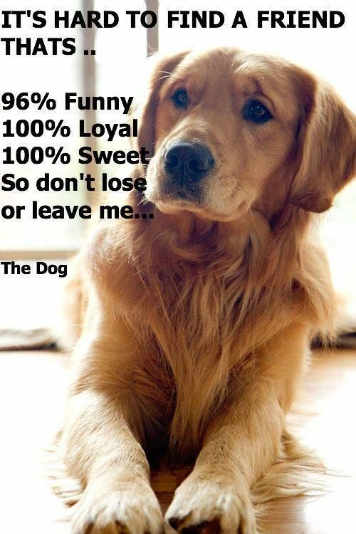 True about dogs