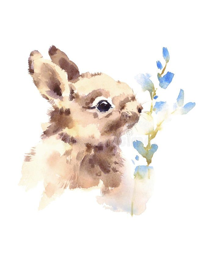 Image Result For Watercolor Cute Animals Bunny
