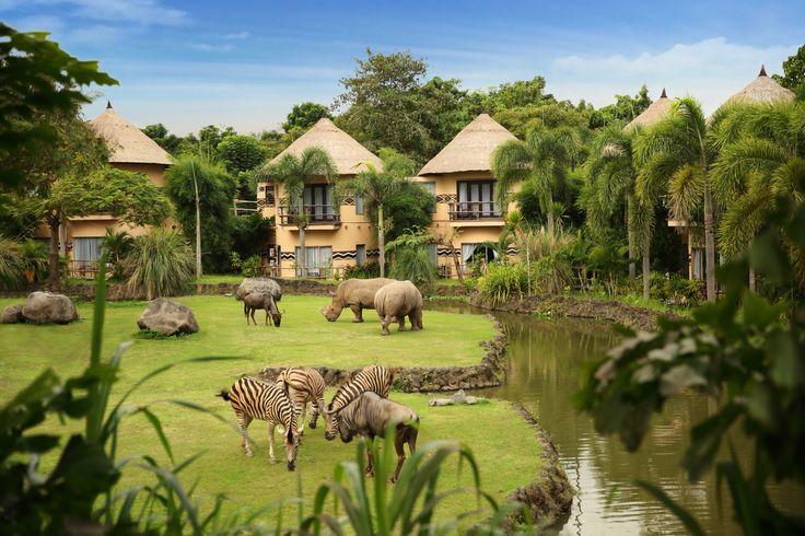 Mara River Safari Lodge view