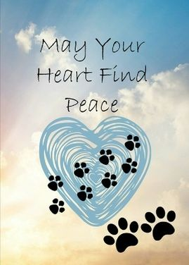 This is a real card (not an e-card) shared from Sendcere.  Pet sympathy