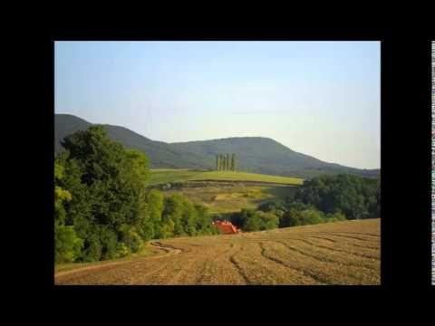 """Meditációs zene önkezeléshez 2 percenkénti gonggal a """"Pránanadi"""" módszer használói számára - YouTube"""