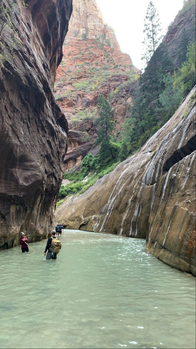 Travel Nature Outdoors Zion Zionnationalpark Places To Travel Life Is An Adventure Travel Life