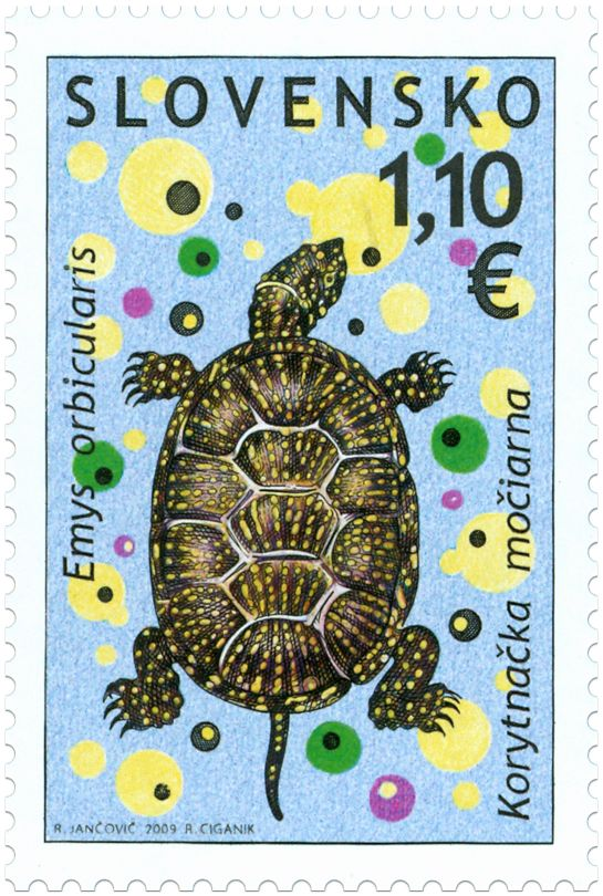 Preservation of Nature: European pond terrapin, stamp by Jancovic, Ciganik, 2009, Slovakia