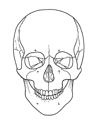 Skull Line Drawing Tattoo : Sugar skull outline crafty lady abby a day