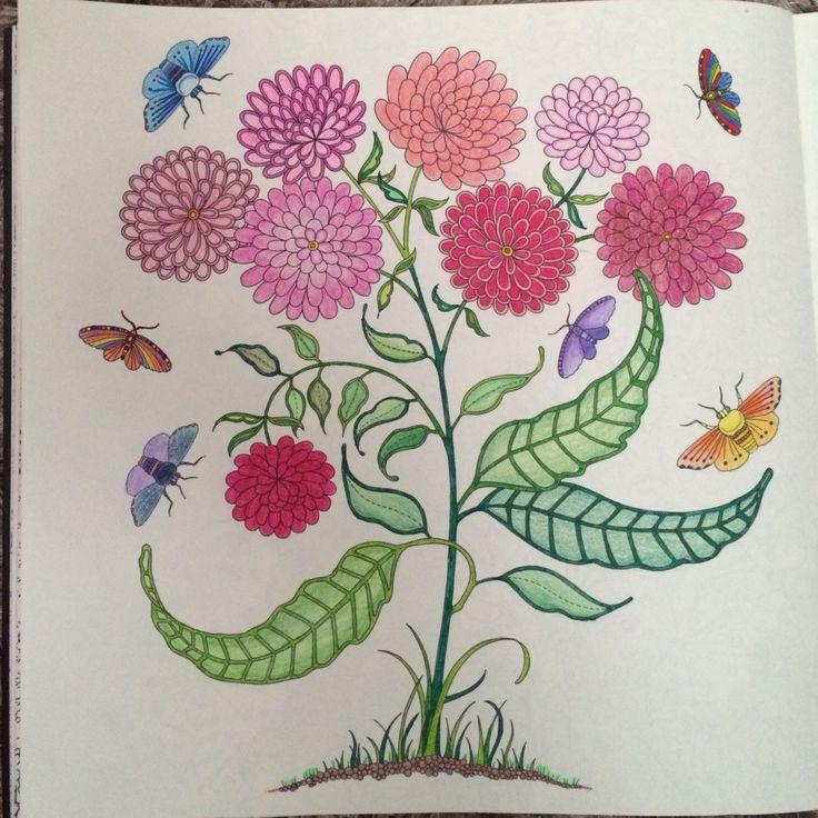 Secret Gardens Johanna Basford Coloring