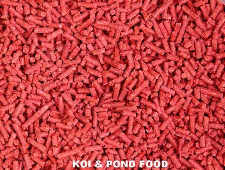 NEW SINKING  KOI & POND FISH FOOD PELLET COLOUR ENHANCING IMMUNE SUPPORTING FOOD