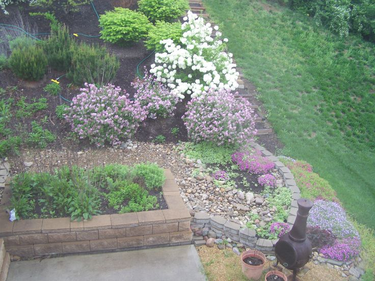 Spectacular Raised Beds This past May I went to Disney World in Orlando Florida. Epcot was having their annual garden show and I saw…