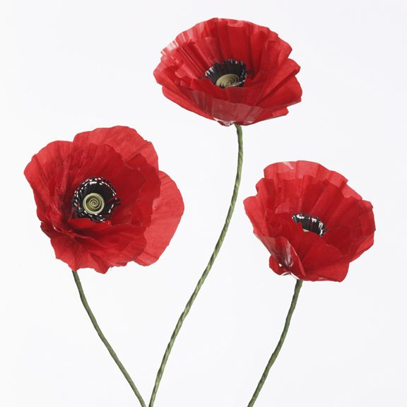 Tutorial: Paper Poppy
