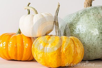 Assorted pumpkins in white, orange, yellow and greenish-blue