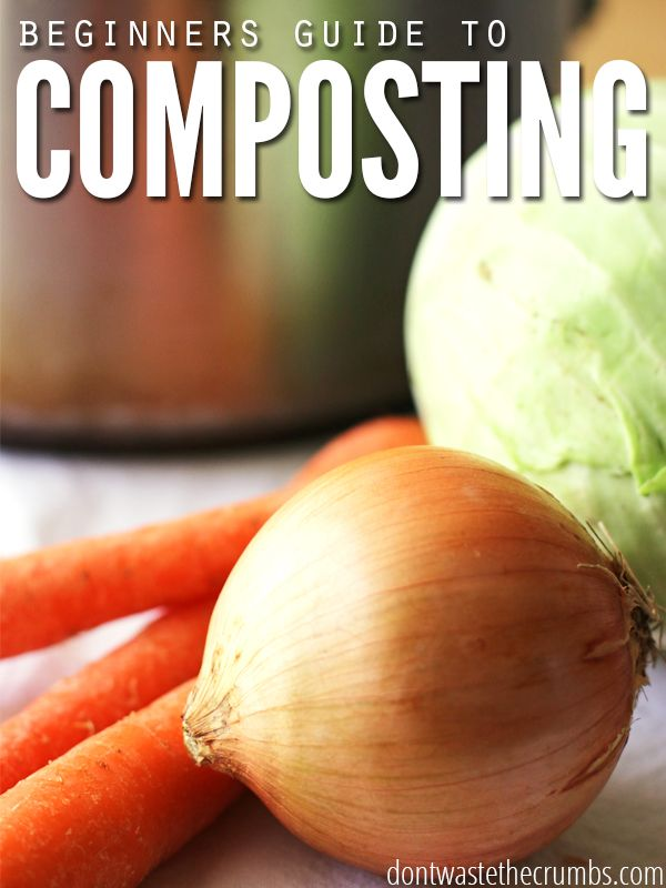 First grade Lesson Composting | BetterLesson