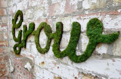 Very cool! Instructions on how to make homemade moss graffiti. How fun is that??