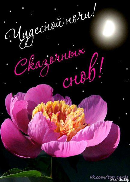 Магия цветов