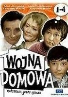 Wojna domowa (1965)