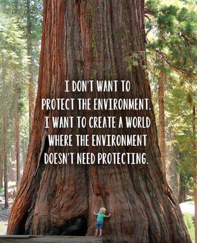 My dream career in environmental engineering summed up perfectly.