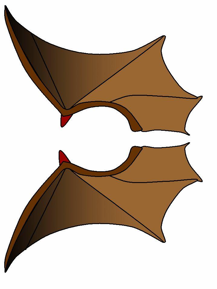 Vleermuis vleugels gekleurd