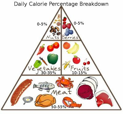 56 best images about Paleolithic Diet via L J Wilson on ...