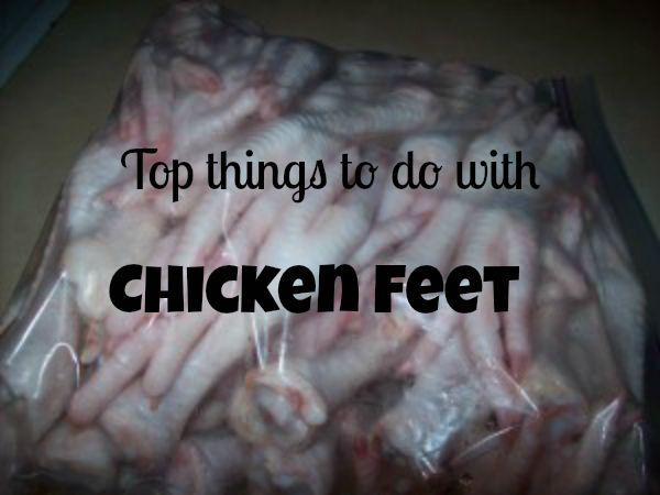 What To Do With Chicken Feet Foods Pinterest Chicken Poultry