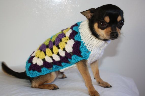 Free Crochet Granny Square Dog Sweater : Small Dog Sweater For Mini Dog Pet Chihuahua Yorkie Min ...