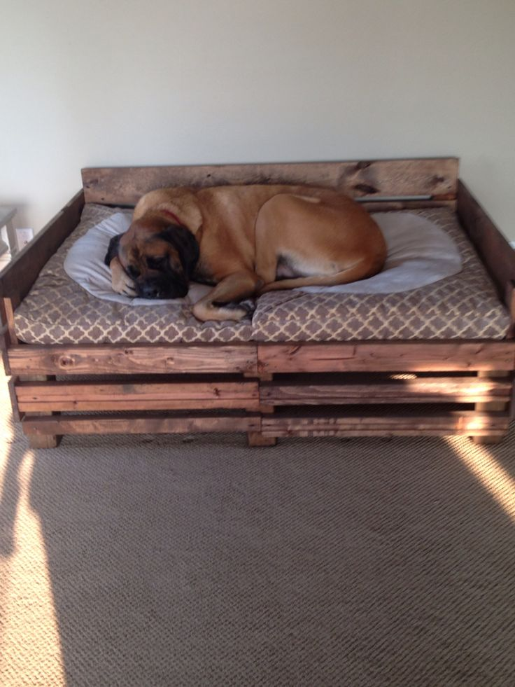 Best 25+ Homemade dog bed ideas on Pinterest | DIY love ...