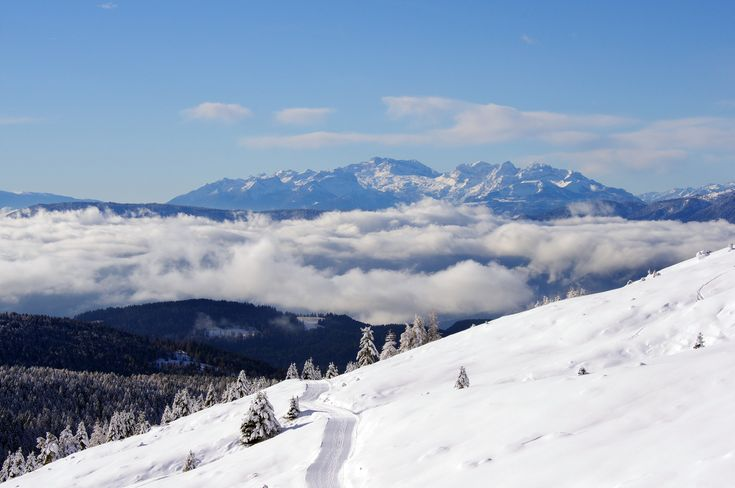SNOW SAFARI | MERANO 2000 | SNOWCAMPITALY | snowcamp.it