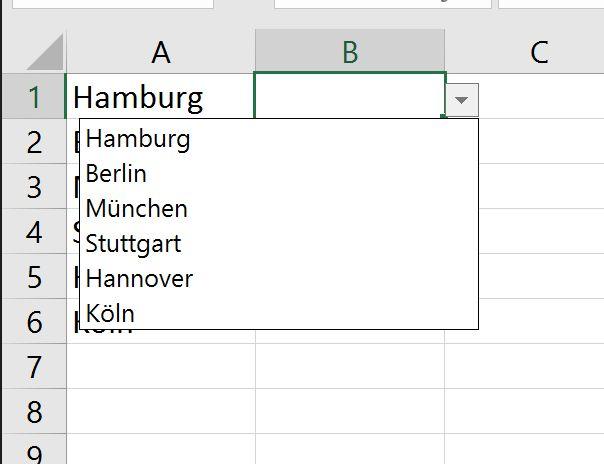 Excel: So erzeugen Sie eine individuelle Auswahlliste – Christoph Wegemann