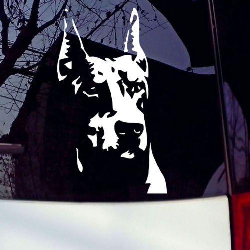 Doberman Vinyl Die Cut Decalcomania Della finestra di automobile Autoadesivo Del Computer Portatile Pet Cane Amore Paraurti Auto
