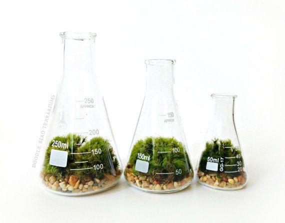 637 Best AP Biology Images On Pinterest