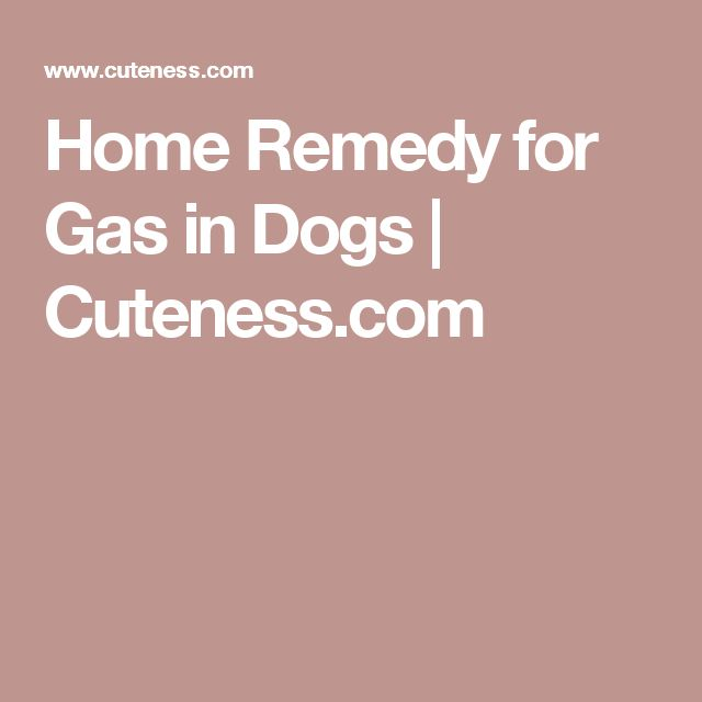 Home Remedies For Water Retention In Dogs