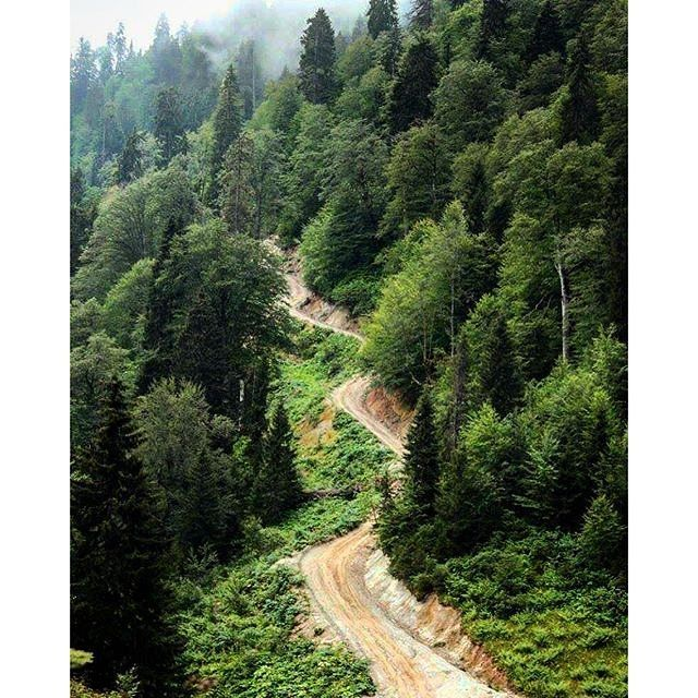 Rize ⛵ Eastern Blacksea Region of Turkey ⚓ Östliche Schwarzmeerregion der Türkei #karadeniz #doğukaradeniz #rize #travel #nature #ecotourism #mythological #colchis #thegoldenfleece #thecolchiandragon #amazonwarriors #tzaniti