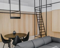 MUS architects' wireframe apartment in cracow is designed to adjust the clients' lifestyle