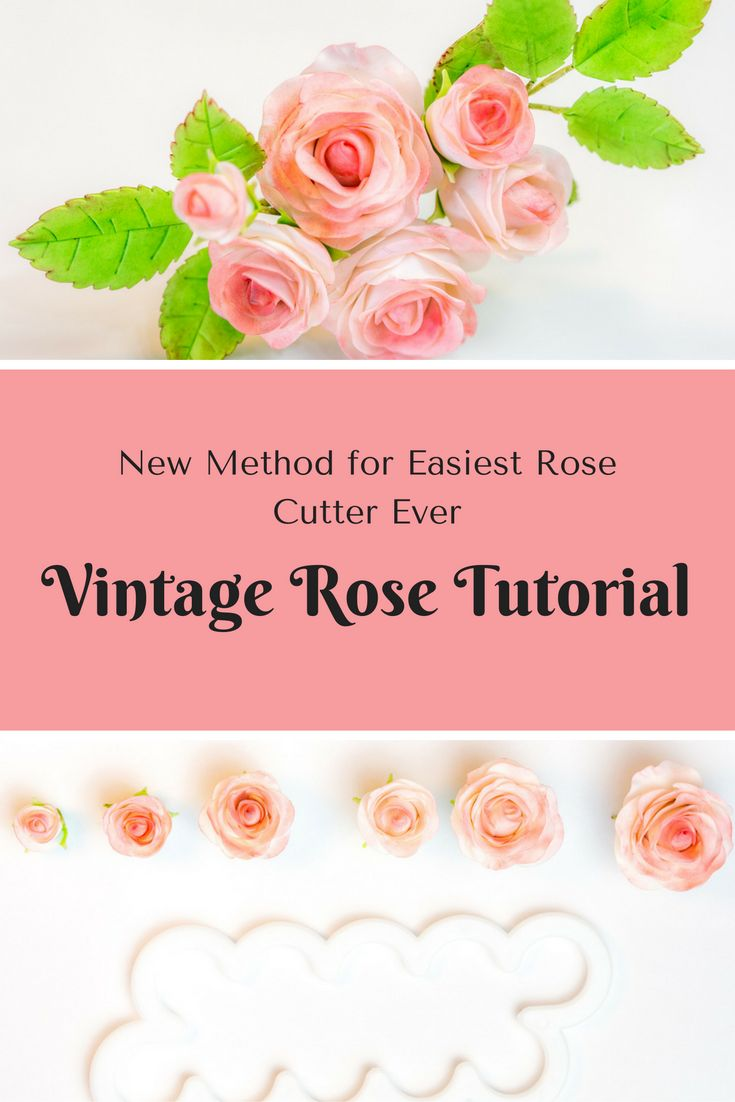 Die schönere Easiest Rose Cutter Ever Rose  New Method for Easiest Rose Cutter Ever  Tutorial Anleitung für Easiest Rose Cutter Ever