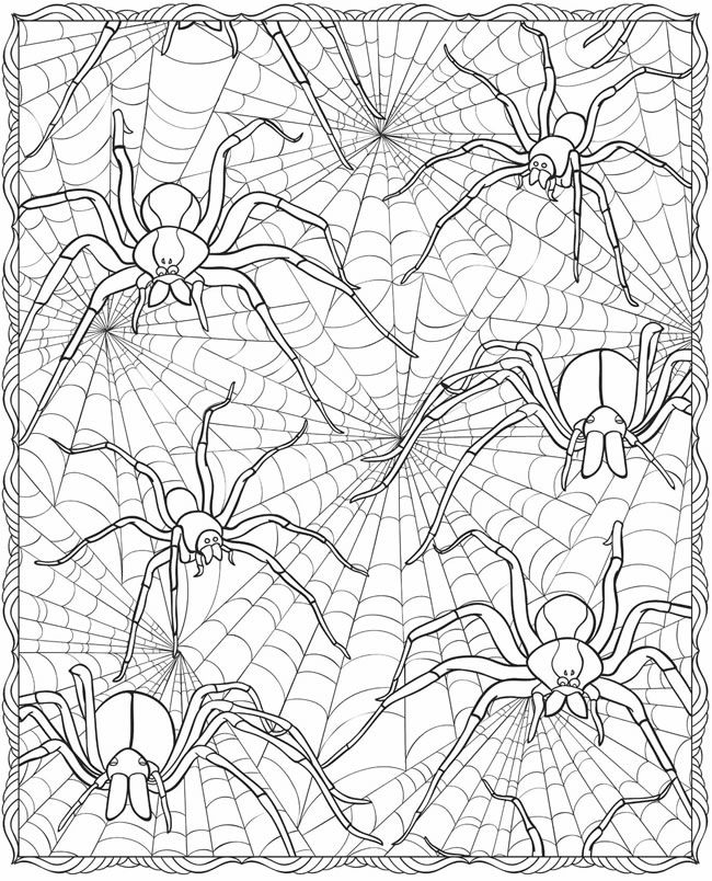 SPIDER COLORING PAGE~ Cool, creepy, and fun Halloween activity.