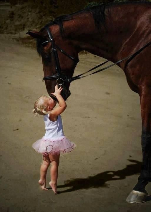 Animal love... How precious is this, she is so very tiny. The horse actually bends down to her. Wonderful, isn't it?