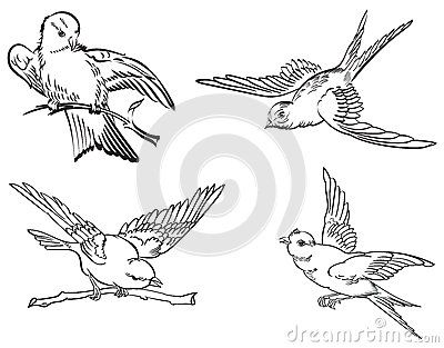 Fluttering birds, line art