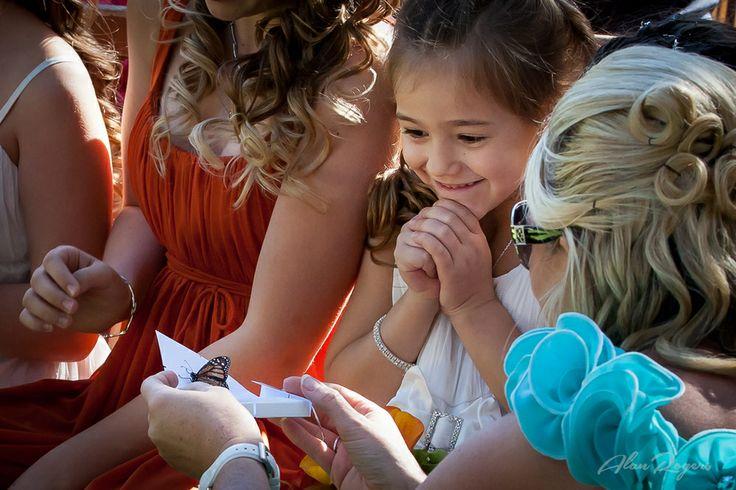 Wedding butterfly release!