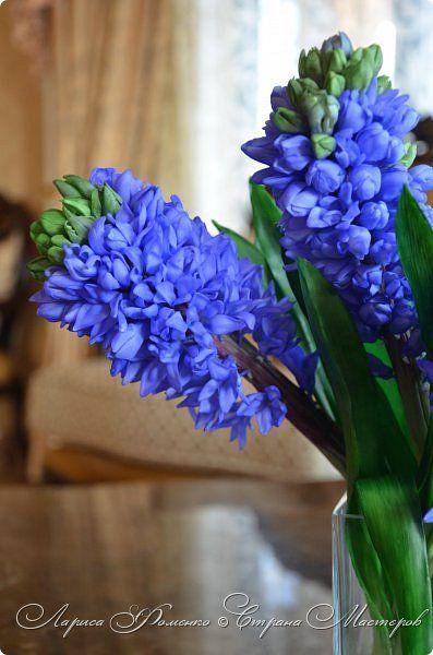 """Гиацинт. Букет гиацинтов """"HYACINTH BLUE"""".Выполнен из специальных полимерных глин. Мастер - Лариса Фоменко. Bouquet of hyacinths """"Hyacinth blue"""" made of special polymer clay. Master - Larysa Fomenko"""